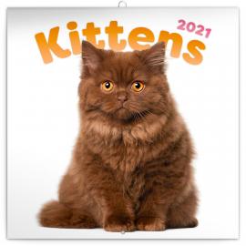 Poznámkový kalendár Mačiatka 2021, 30 × 30 cm