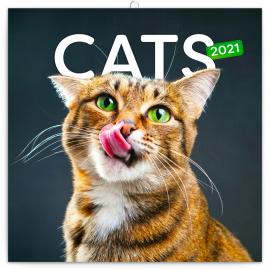 Poznámkový kalendár Mačky 2021, 30 × 30 cm