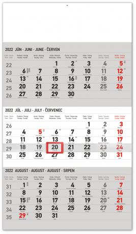 Nástenný kalendár 3–mesačný štandard šedý – so slovenskými menami 2022, 29,5 × 43 cm