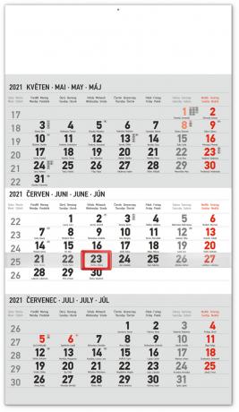 Nástenný kalendár 3měsíční standard šedý – s českými jmény CZ 2021, 29,5 × 43 cm