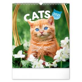 Nástenný kalendár Mačky 2021, 30 × 34 cm