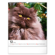 Nástenný kalendár Mačky 2022, 30 × 34 cm