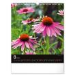 Nástenný kalendár Korenie a bylinky 2022, 30 × 34 cm