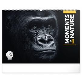 Nástenný kalendár Momenty v prírode 2021, 48 × 33 cm