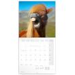 Poznámkový kalendár Úsmev, prosím... 2021, 30 × 30 cm