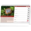 Stolový Hubársky kalendár SK 2021, 23,1 × 14,5 cm
