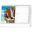 Stolový kalendár Krtko SK 2021, 23,1 × 14,5 cm