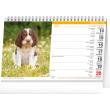 Stolový kalendár Psi – Psy CZ/SK 2021, 23,1 × 14,5 cm