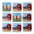 Teribear - pexeso s výukou angličtiny, 36 kartičiek v krabičke