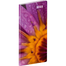 Vreckový diár Detail 2022, plánovací mesačný, 8 × 18 cm